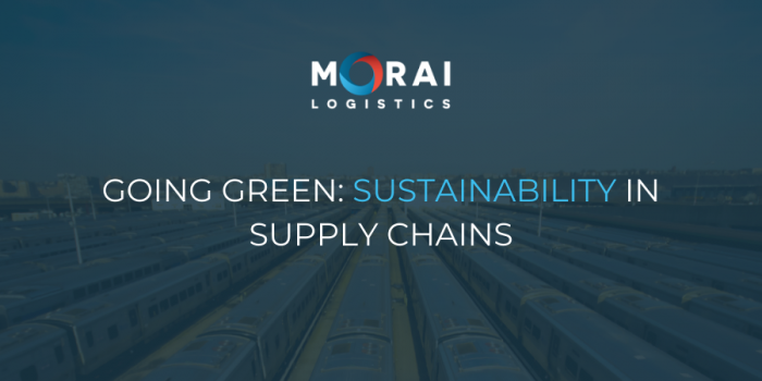 Going Green: Sustainability in Supply Chains
